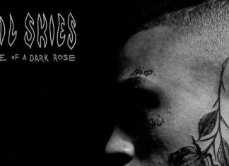 lil skies life of a dark rose