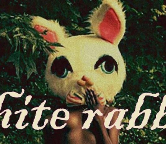 PJ Lucid White Rabbit