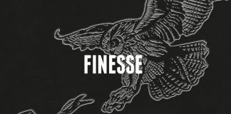 finesse cover