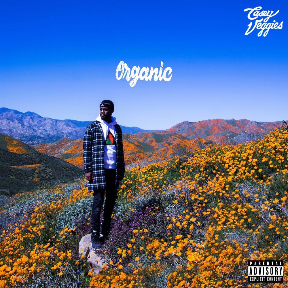 casey veggies organic album stream