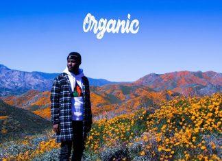 casey veggies organic